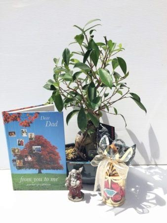 Dads Bonsai & Book Bundle